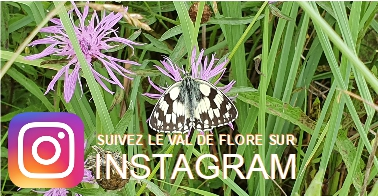 Photo Val de Flore et logo Instagram